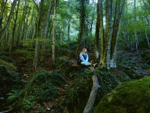 woods-Parco nazionale del Gran Sasso e dei Monti della Laga-Italy