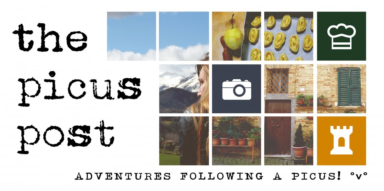 cropped-picus-copertinablocchi1.jpg